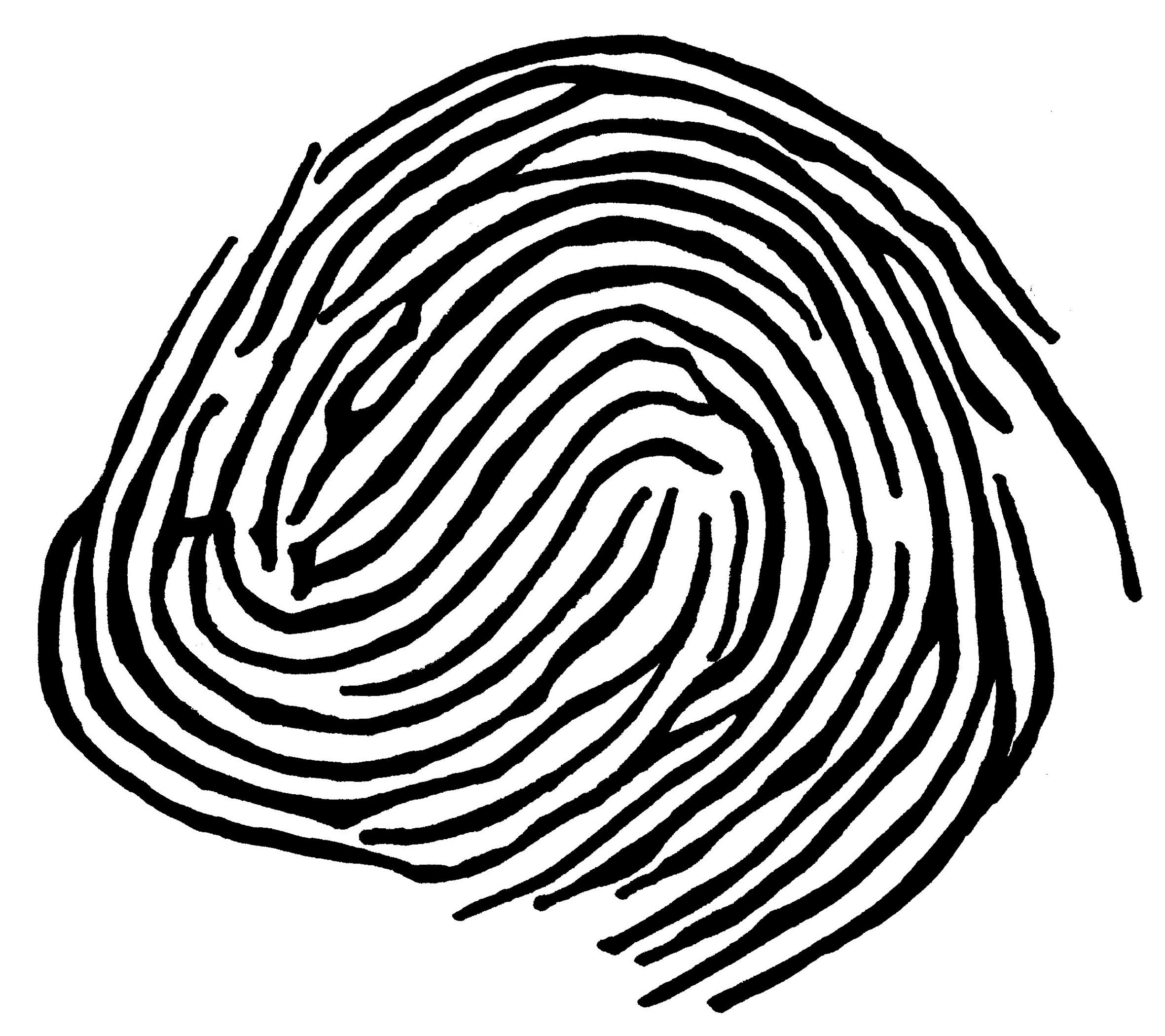 fingerprint drawing
